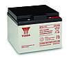 Аккумуляторная батарея Yuasa NP 24-12I