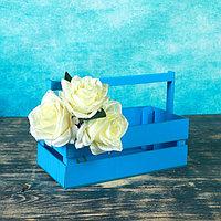 """Кашпо деревянное 24.5×13.5×9 см """"Двушка Лайт"""", двухреечное, голубой Дарим Красиво, фото 1"""