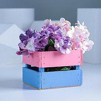 Ящик реечный розово-голубой, 11 х 12 х 9 см, фото 1