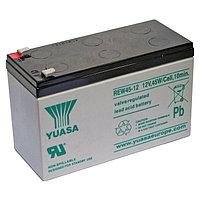 Аккумуляторная батарея Yuasa REW 45-12