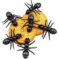 Насекомое в наборе муравьи на Halloween