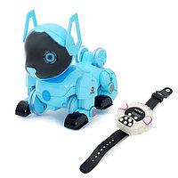 Робот-собака радиоуправляемый «Паппи», световые и звуковые эффекты, работает от аккумулятора, цвет голубой