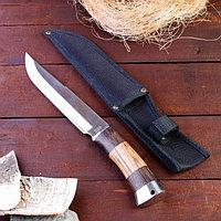 Нож охотничий, рукоять дерево, лезвие 21 см