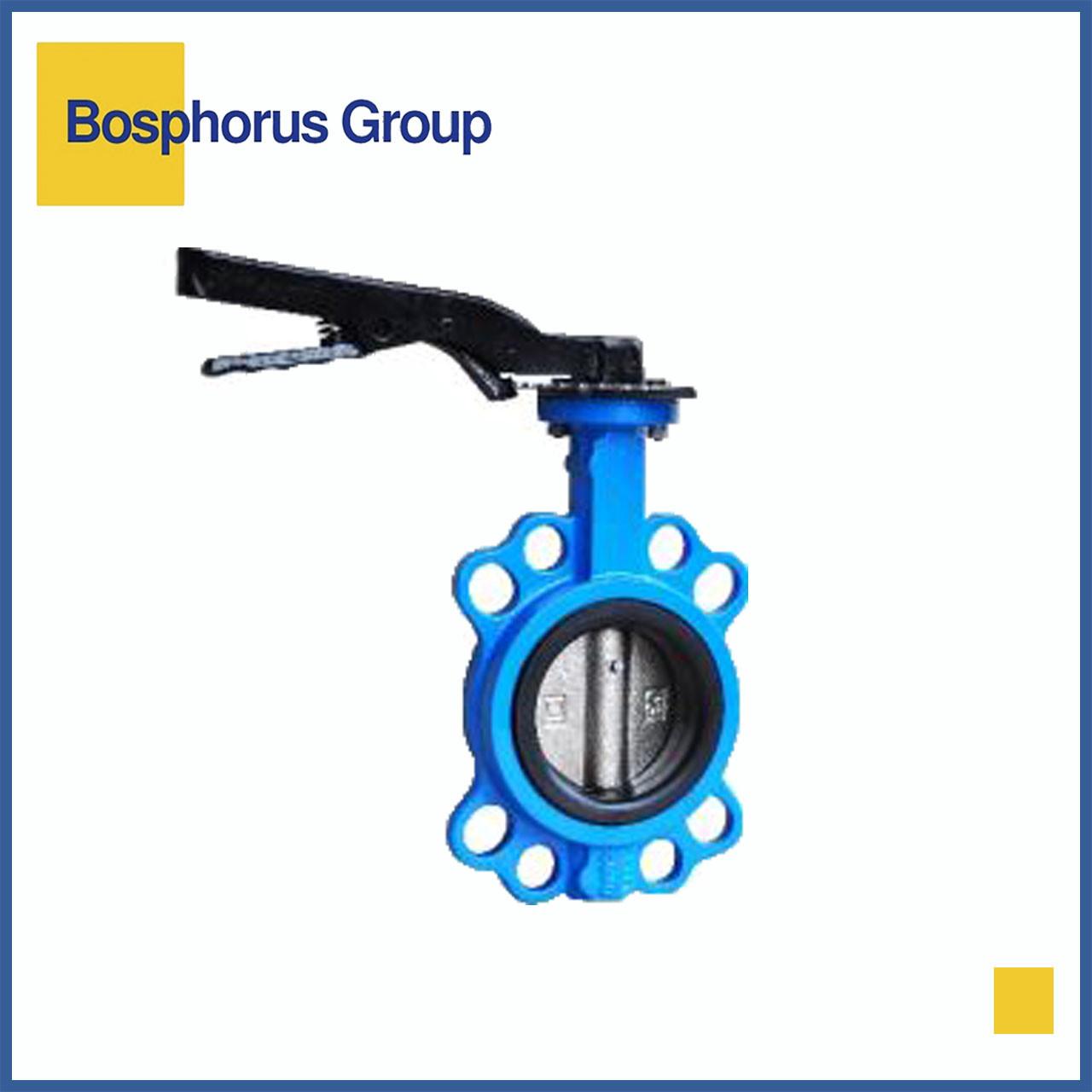 Затвор дисковый межфланцевый Ду150 Ру16, Brandoni (вода, +120)