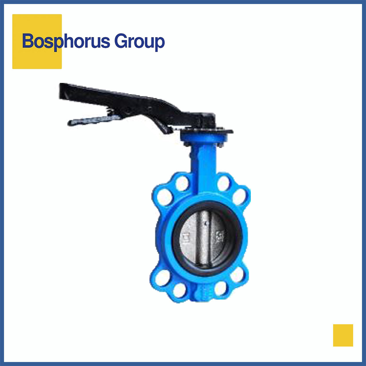 Затвор дисковый межфланцевый Ду250 Ру16, Brandoni (вода, +120)
