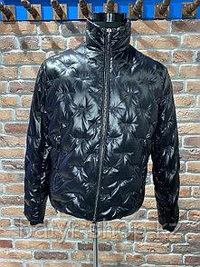 Куртка зимняя Emporio Armani (0291)