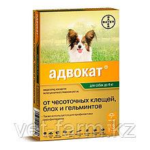 Адвокат для собак до 4 кг  1 пипетка