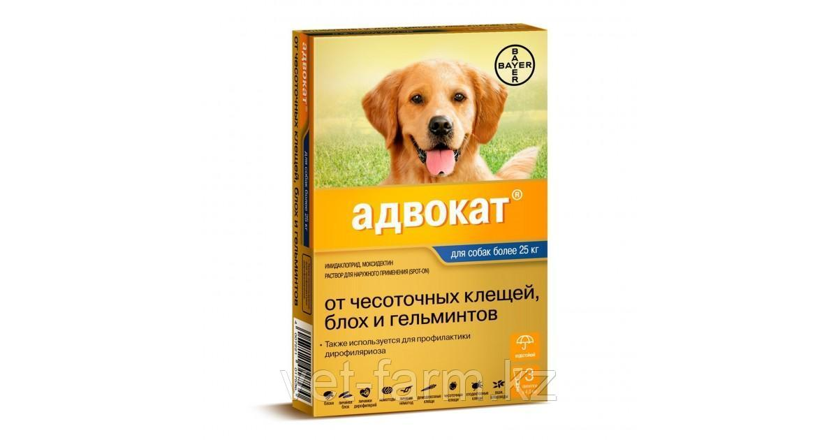 Адвокат для собак свыше 25 кг 1 пипетка