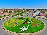 Изготовление Топиаров в Казахстане, фото 1