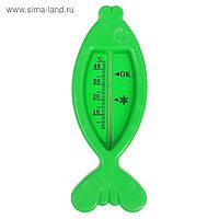 Термометр для ванной «Рыбка», цвет зелёный
