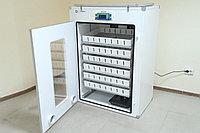 Инкубатор Demetra - М на 1056 яиц