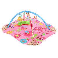 Развивающий коврик Pituso Цветочная поляна 27292