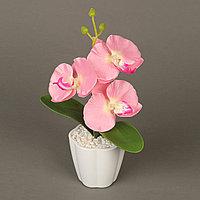 Декоративная композиция-вазон Орхидеи, фото 1