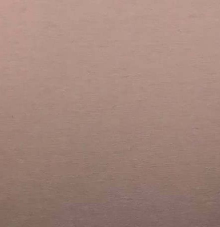Алюминиевая композитная панель Bildex AN 8101/ Copper 20