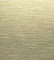 Алюминиевая композитная панель Bildex AN 8113/ Gold 20