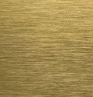 Алюминиевая композитная панель Bildex AN 8114/ Gold 40