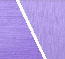 Алюминиевая композитная панель Bildex BS 1301/ Фиолетовый