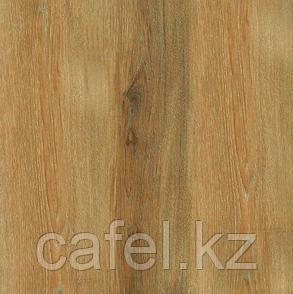 Керамогранит 42х42 - Тагро | Tagro коричневый