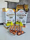 Гарциния Камбоджийская для похудения и магнитный браслет, фото 2
