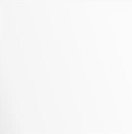 Алюминиевая композитная панель Bildex BG 9003/ Белый