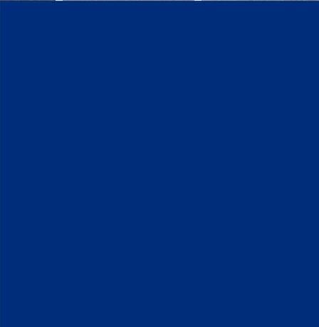 Алюминиевая композитная панель Bildex BF 5005/ Синий