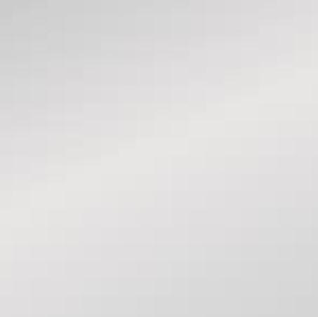 Алюминиевая композитная панель Bildex BX 9006/ Серебро матовое