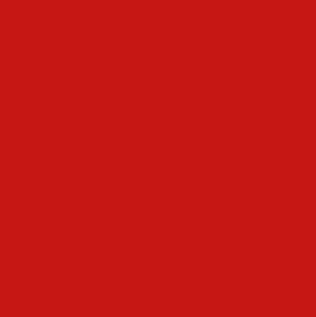 Алюминиевая композитная панель Bildex BX 3020/ Красный