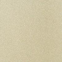 Алюминиевая композитная панель Bildex BL 0202/ Шампань