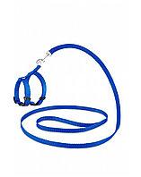 Комплект Saival Classic «Color» Синий XS