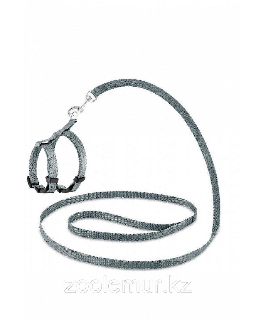 Комплект Saival Classic «Color» Серый S