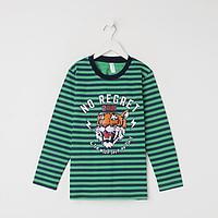 Лонгслив для мальчика, цвет зелёный/полоска, рост 128 см, фото 1