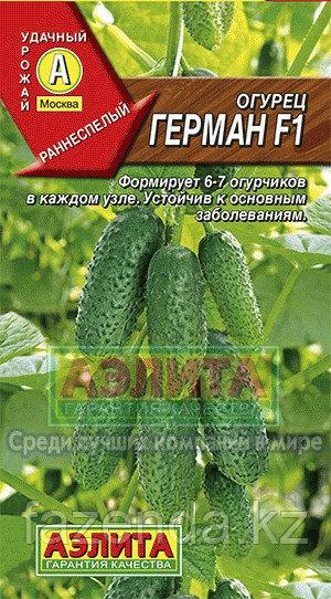 Огурец Герман F1 5 шт Сибирский сад
