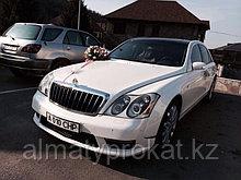 Аренда автомобиля класса люкс Maybach 57 (Майбах)