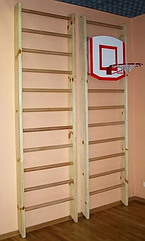 Щит баскетбольный для ШС 45*60см
