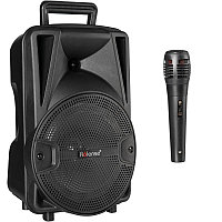 Bluetooth колонка Party BoomBox Tiger 2+ Black. Колонка караоке с микрофоном.