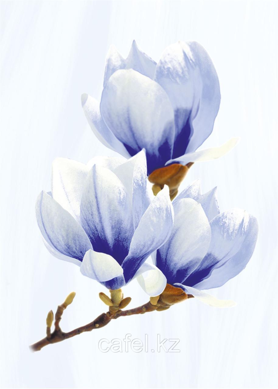 Кафель   Плитка настенная 25х35 Агата   Agata голубой декор D
