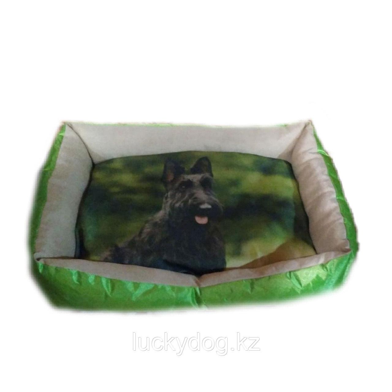 Лежак для собак с рисунком , средний размер .