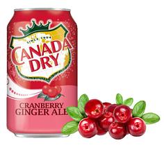 Canada Dry Ginger Ale Клюква 355ml (12шт-упак)