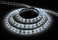 Светодиодная LED лента Feron LS606, 60SMD(5050)/м 14.4Вт/м 5м IP20 12V 6500К