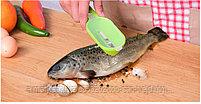 Нож для рыбной чешуи( рыбочистка), фото 6