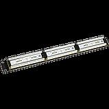 Патч-панель LANMASTER 24 порта с индикаторами, UTP, кат.6, 1U, фото 2