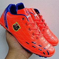 Обувь для футбола /сороконожки