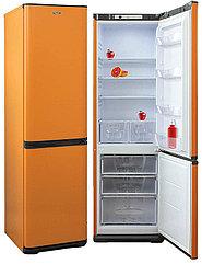 Холодильник Бирюса T360 NF