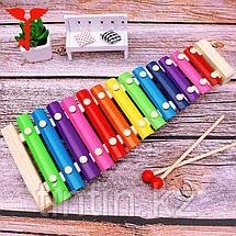 Детский деревянный ксилофон 13 тонов, фото 2