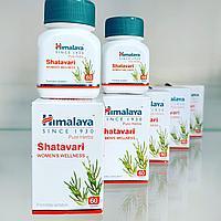 Шатавари (Shatavari, Himalaya) - для женского здоровья, 60 капс
