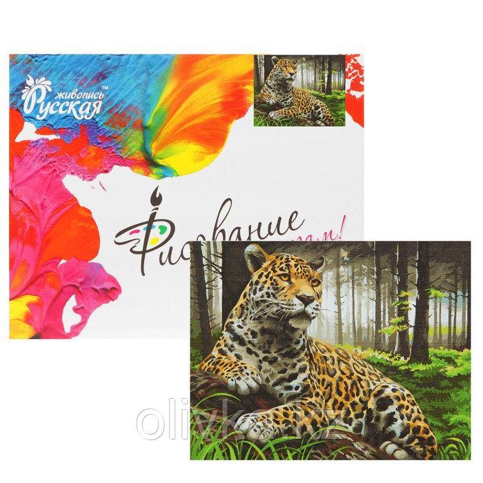 Картина по номерам «Леопард в лесу» 40х50 см, 24 цвета