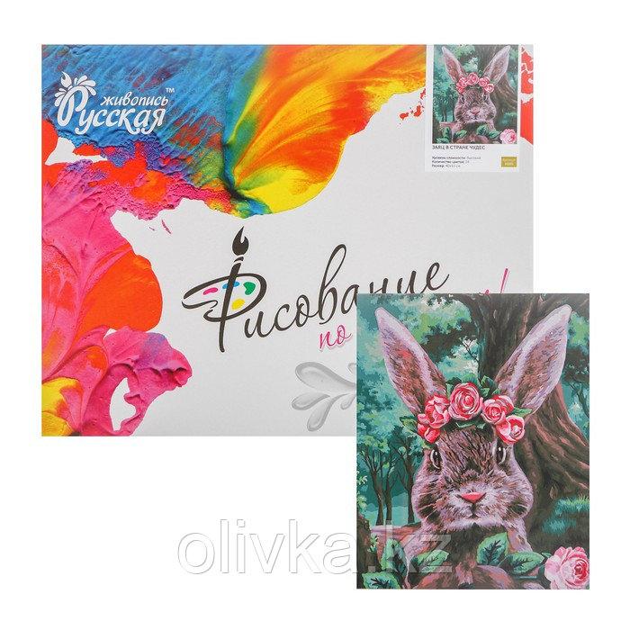 Картина по номерам «Заяц в стране чудес» 40 × 50 см