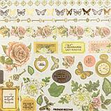 "Набор бумаги ""Силуэт бабочки"" 30.5смх30.5см, 24 листа+1 лист вырубки, фото 6"