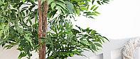 Лиственные и фикусы - искусственные декоративные растения