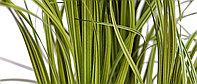 Одиночные растения - искусственные декоративные растения